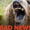 Thumb bad news bears